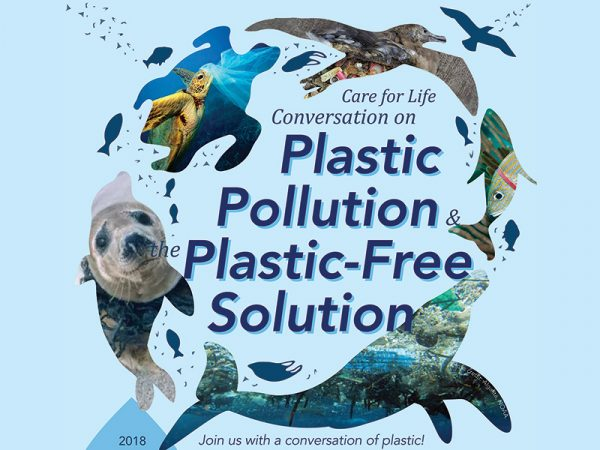 Plastic Pollution & the Plastic-Free Solution