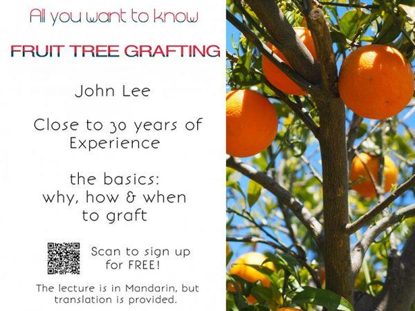 Fruit-Trees-Grafting 0317