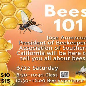 認識蜜蜂及體驗 Bee Class and Bee Experience