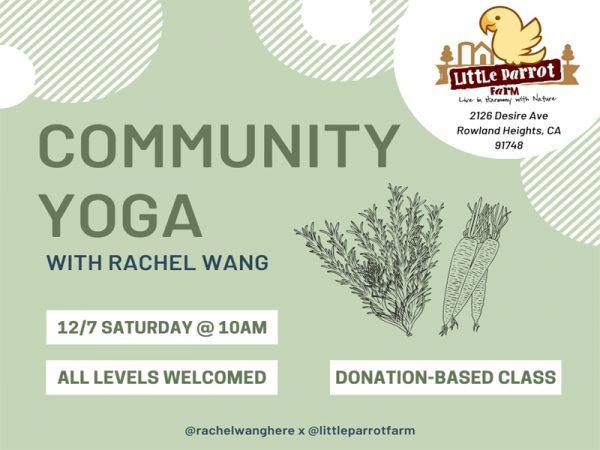 Yoga Saturday at Little Parrot Farm_12072019