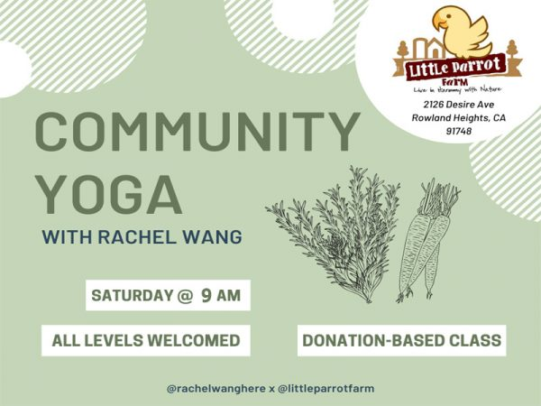 Yoga Saturday 9am-2020 at Little Parrot Farm
