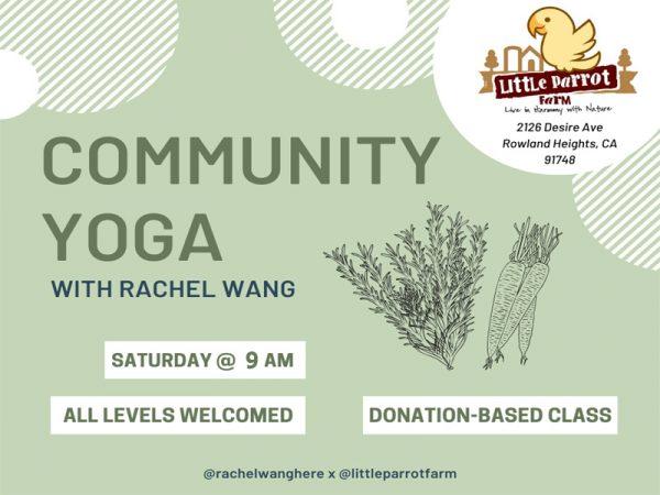 Yoga Saturday 9am @Little Parrot Farm
