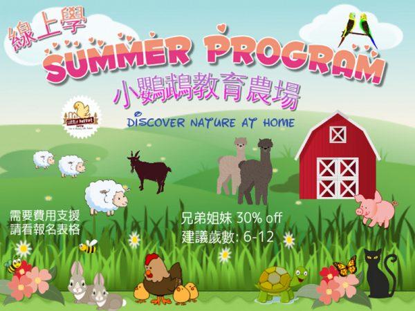 小鸚鵡農場-暑期線上課程